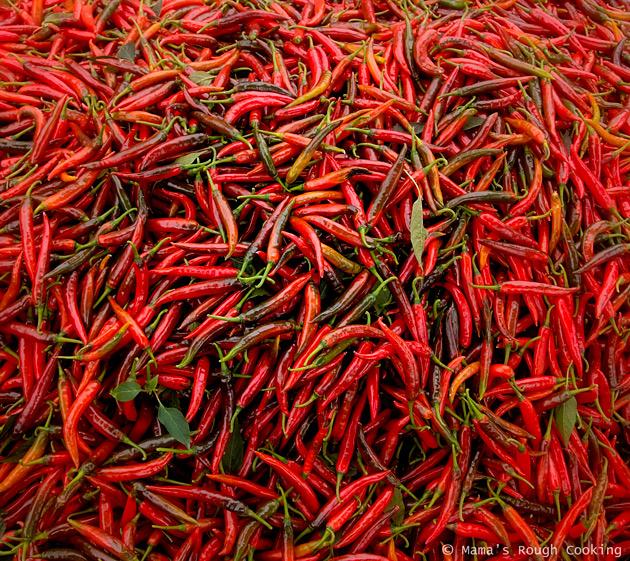 chilis-ovan-landet-bali
