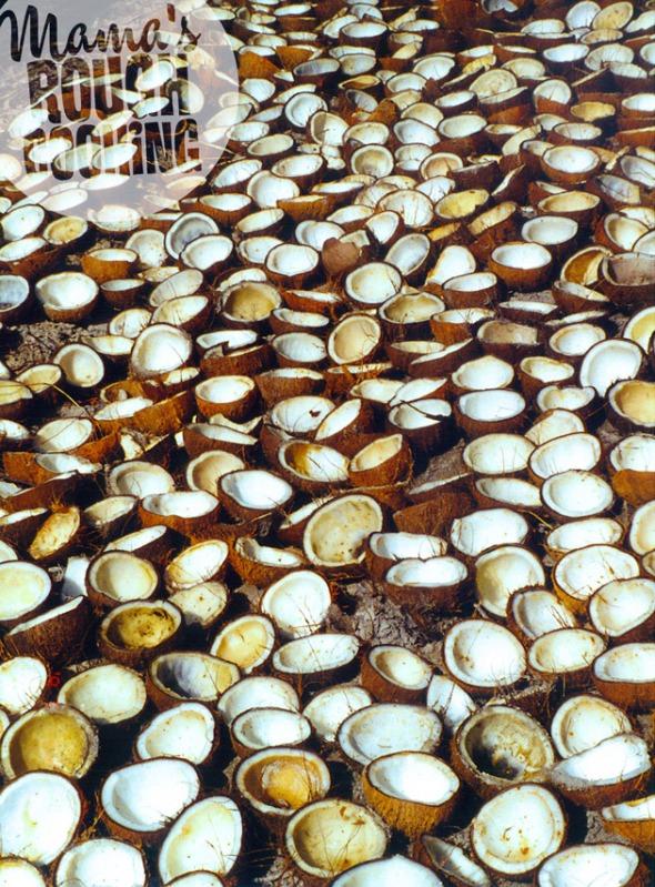 kokos-halva